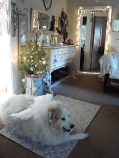 Christmas Angel Great Pyrenees at My Petite Maison