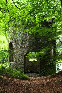Swithland Folly, Leicestershire England, by Karl Leicester, United Kingdom, Woods, Woodwind Instrument, Forests, England