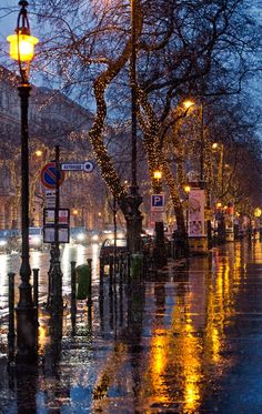 Rainy day at the Andrássy street, in Budapest, Hungary