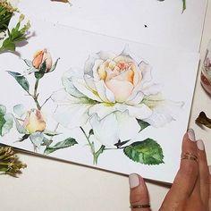 Watercolorist: @welcometomyapril #waterblog #акварель #aquarelle #painting #drawing #art #artist #artwork #painting #illustration #watercolor #aquarela