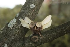 Fall craft ideas - acorn and walnut deer, pinecone owl and hedgehog, maple seed dragonfly.