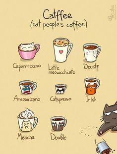 #cafe #gatos #catlovers
