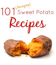 101 Amazing Sweet Potato Recipes - from appetizers, side dishes, entrees, desserts, to even drinks!