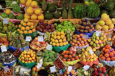 tropicália by paulogodoy62, via Flickr