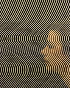 Spider Fawn Library c___l___o Bridget Riley Art, Background Images For Editing, Object Photography, Abstract Oil, Illuminated Manuscript, Fractal Art, Optical Illusions, Artist Painting, Surface Design