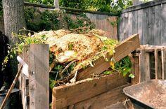 Kelly and Erik's Urban Farm compost