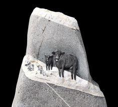 Bildhauerei Bätscher – Steinkunst aus dem Berner Oberland Moose Art, Animals, Stones, Animales, Animaux, Animal Memes, Animal, Animais, Dieren