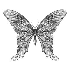 adult coloring pages amazing butterfly