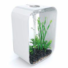 biOrb Life 60 - 16 Gallon Life Water Acrylic Aquarium Kit - White (P6000WHITE)