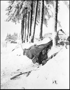Sergeant John Opanowski of the 10th Armored Division, emerges from a dug-out built under snow in the Bastogne area. The 10th Armored Division and the 101st Airborne Division were pinned down in the Bastogne area by General von Manteuffel's crack Panzer Divisions - the 2nd and the 116th Divisions Military Photos, Military History, Military Humor, American Soldiers, American Civil War, History Online, Ardennes, World War Two, Wwii