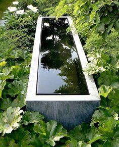 Reflection  // Great Gardens & Ideas //