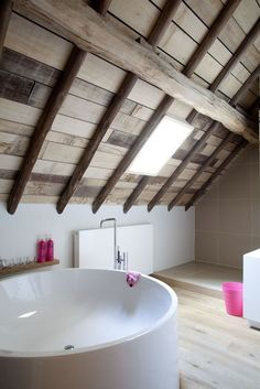 Bouwen Farm Renovation in Belgium