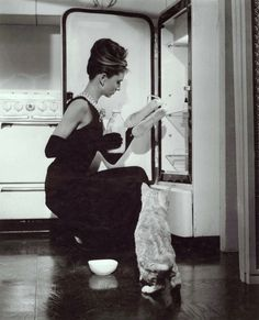 Breakfast at Tiffany's.  I don't know why kitty puts up with her.