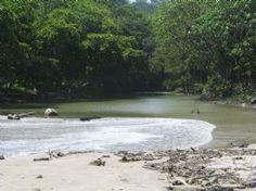 Estuary in Mal Pais-Mal Pais, North Puntarenas