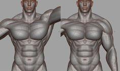 Anatomy Body Parts, 3d Anatomy, Anatomy Models, Anatomy Sketches, Muscle Anatomy, Anatomy For Artists, Anatomy Study, Anatomy Drawing, Anatomy Reference