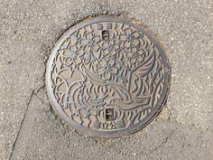 東京都葛飾区水元公園3