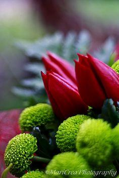 http://creamaricrea.blogspot.it/2012/04/fiori-per-la-laurea.html
