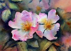 Ann Mortimer —  Dog Roses (1479×1075)