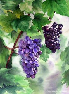 Watercolor Fruit, Watercolor Artwork, Watercolor Artists, Watercolor Landscape, Watercolor Flowers, Grape Painting, Fruit Painting, Tuscan Art, Pomegranate Art