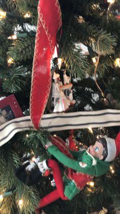 Climbing ribbon up the Christmas tree! Christmas Time, Christmas Ornaments, Shelf Ideas, Christmas Traditions, Craft Tutorials, Elf On The Shelf, Climbing, Ribbon, Shelves