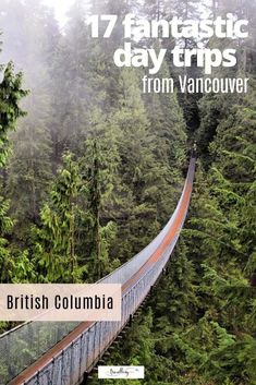 Whether it's tiptoeing through tulips in Abbotsford or zip lining in Whistler, these 17 day trips from Vancouver, Canada, will showcase the best of its beautiful west coast backyard. #vancouver #familytravel #britishcolumbia #daytrips Travel With Kids, Family Travel, Travel Uk, Egypt Travel, Japan Travel, Travel Tips, Whistler, West Coast Canada, Sea To Sky Highway
