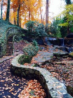 Falls park is about to explode with autumnal oranges and yellows! Don't miss this gem in Downtown Greenville, South Carolina // yeahTHATgreenville