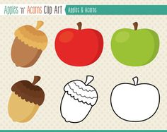Apples 'n' Acorns Clip art - color and outlines Freebie
