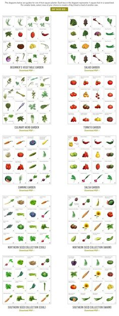 Beginner's vegetable garden, salad garden, herb garden, tomato garden, canning garden, salsa garden, northern and southern seed collections - downloadable pdf charts #vegetable #gardening