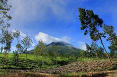 Mount Sindoro || Jawa Timur, Indonesia