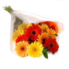 Want to send flowers to Mysore, gifts to Mysore, Valentine's day gift hampers, birthday cakes , new year gifts,  valentine's day bunch of red roses, online gift shop, fresh flower same day delivery, chocolates, sweets to Mysore.