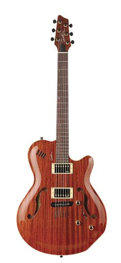 Godin Montreal guitar.  Specs  Body - carved solid mahogany with carved solid mahogany top  Fingerboard - rosewood  Neck - mahogany  Scale - 24 ¾  Electronics - 2 X Godin humbuckers plus and LR Baggs bridge transducers and custom PreAmp  2 outputs  Volume, tone, blend  Natural High Gloss Finish