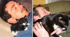 21 Before and After Photos of Cats Growing Up
