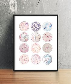 Microbe Collection Bacteria Bacteria Art Science by sandraculliton