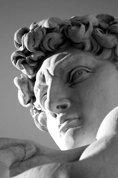 David - Michelangelo Buonarroti by Andrea Bosio...