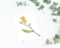 Watercolor Postcard, Watercolour Painting, Watercolor Flowers, Acacia, Minis, Winsor And Newton Watercolor, Mini Paintings, Small Tattoos, Flower Art