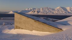 """The Svalbard Global Seed Vault, also known as the """"doomsday"""" vault, took its first contribution of tree seeds this week."""