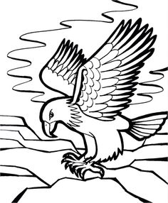 Eagle Coloring Page For Adult