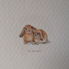 Day 142 : Lop bunnies from Holland 22 x 15 mm 0 by Lorraine Loots