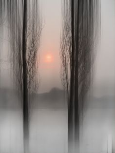 Winter Sun by Andreas Helweg