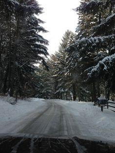 Driveway to house in Ligonier, PA