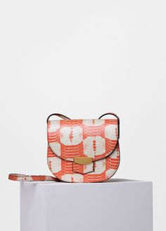0a668e7bbc71 Small Trotteur Bag in Printed Watersnake - Céline Sapatos, Mini Bolsa,  Bolsas Inspiradas Em