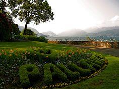 Lake Maggiore, Stresa, Italy by Laura Gurton