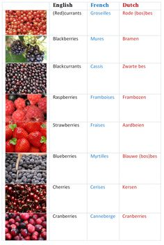 Berries Overview in English, French and Dutch! Berries are healthy food, lots of Vitamin C and antioxidants. http://www.jadorlife.com/?p=85