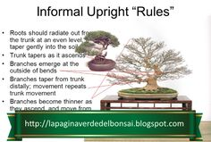Analysis of what 'works' and what 'does not work' in the creation of bonsai: Trunk Rules. What Works, Ancient Art, Experiment, Bonsai, In The Heights, Roots, Gardening, Old Art, Lawn And Garden