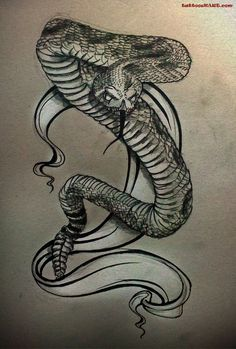 tattoocollection.in wp-content uploads Neo-Traditional-Snake-And-Rat-Tattoos-On-Stomach-3.jpg