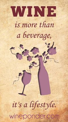 """""""Wine is more than a beverage, it's a lifestyle."""" – Anonymous"""