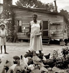 """Breakfast, Lunch and Dinner: July 1939. """"Noontime chores: feeding chickens on Negro tenant farm. Granville County, North Carolina."""" Medium-format nitrate negative by Dorothea Lange for the Farm Security Administration."""