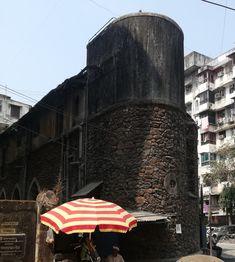 Mumbai, Bombay Cat