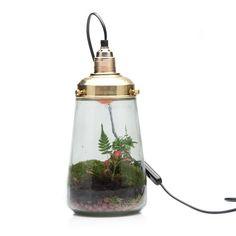 Deze trendy 'duurzame werelden' brengen de natuur op een superoriginele manier in jouw huis! De plantenwereldjes in glaswerk met lamp hebben bijna geen verzorging nodig. Het is een mini ecosysteempje waar de ene plant de ander zal vervangen waardoor het tuintje zal voortleven en andere vormen en verschijningen kan aannemen.