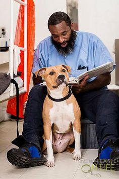 The groundbreaking program has innovated a new adoption strategy that is taking Pennsylvania corrections by storm: Give at-risk shelter dogs a new chance at life by partnering them with trained inmates who prepare the pups for the American Kennel Club's Canine Good Citizen test.
